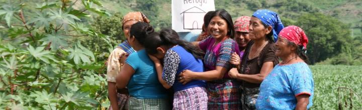 Lead Consultant DRR Project, Diakonie Katastrophenhilfe/Caritas (Guatemala)